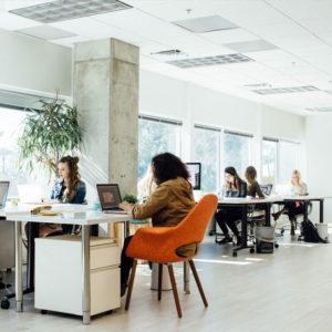 tubu-office