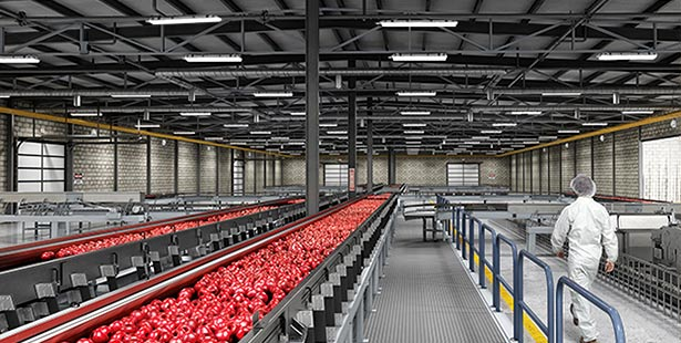 led linear high bay fixtures application for Food-Processing-&-Pharmaceutical