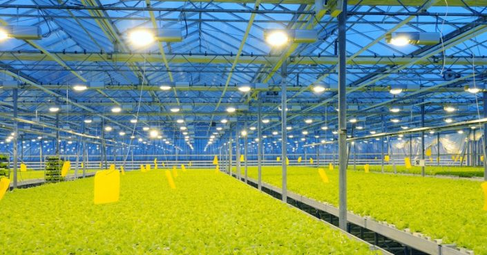 agricultural lighting